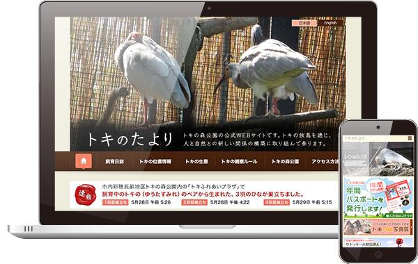 tokinotayori2012_eyeCtach